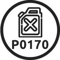 p0170 oshibka